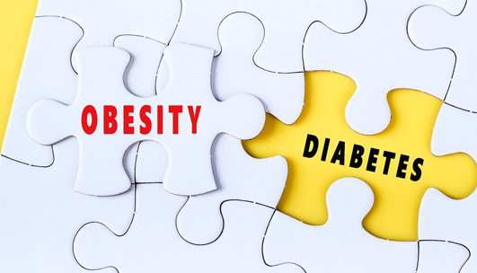 DHI Blog - Combination of obesity and diabetes