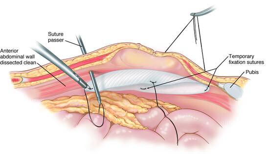 Digestive system image