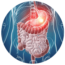 Oncology Surgery Centre in Mumbai   Gastrointestinal Cancer